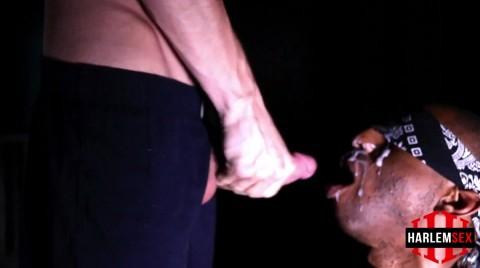 L18850 HARLEMSEX gay sex porn hardcore fuck videos black bbk deepthroat papi thug cum 009