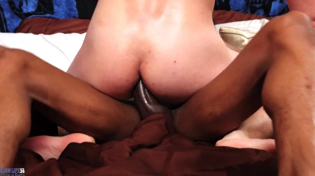 L19994 UNIVERSBLACK gay sex porn hardcore fuck videos blacks black thugz gangsta big cock BBC BBD 17