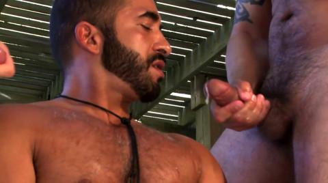 L16101 MISTERMALE gay sex porn hardcore fuck videos male butch hairy muscled studs hunks macho men xxl cocks cum 12