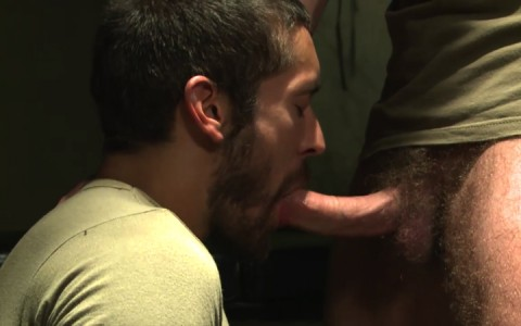 L16074 MISTERMALE gay sex porn hardcore fuck videos males beefy hairy studs hunks 08
