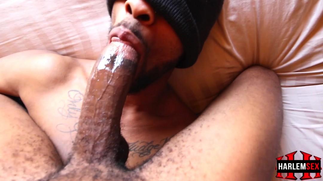 L18740 HARLEMSEX gay sex porn hardcore videos black thug xxl cocks us cum deepthroat 18674