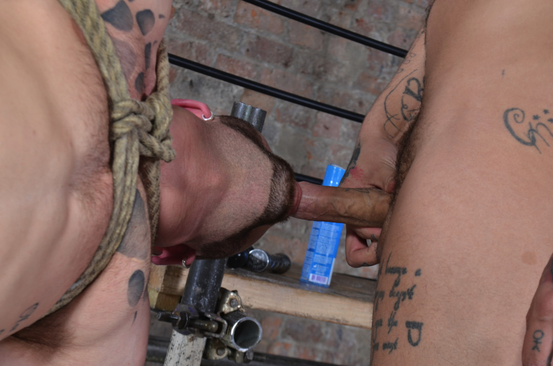 Nice manly gay guy to enslave