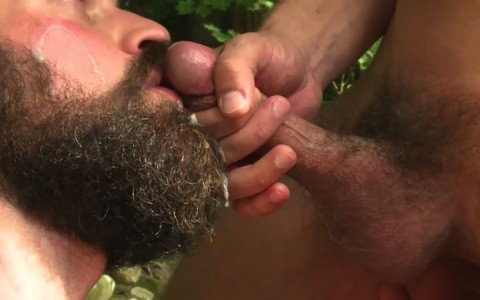 L16294 MISTERMALE gay sex porn hardcore fuck videos males beefy hairy studs hunks 11