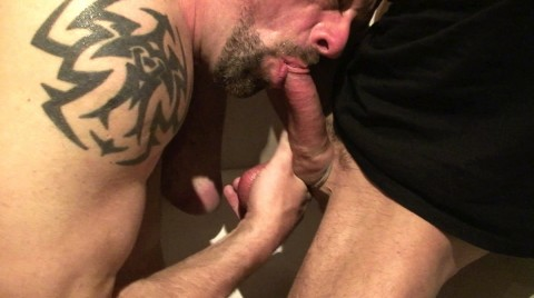 L17899 MISTERMALE gay sex porn hardcore fuck videos bbk macho cum xxl cocks 08