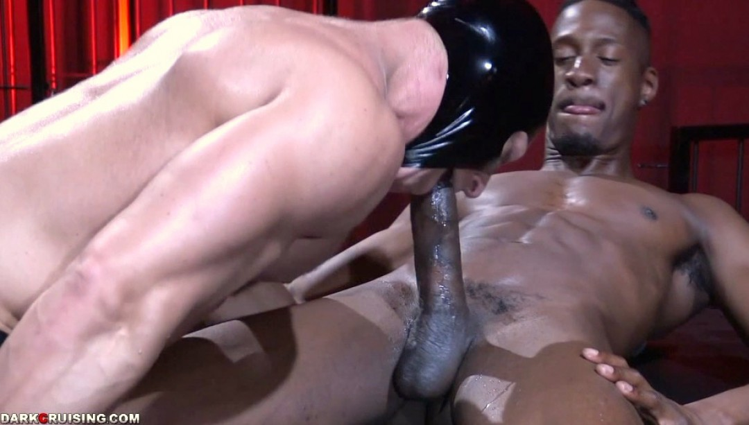Schwanz Schwarzer muskulöser großer Großer schwarzer