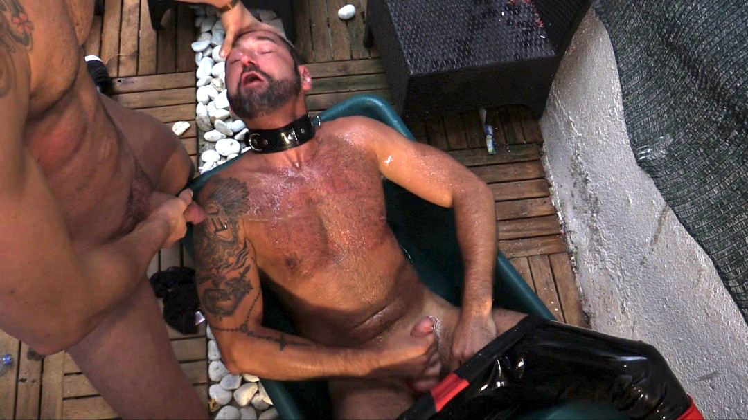 COCK HUNGRY RUBBER PIG
