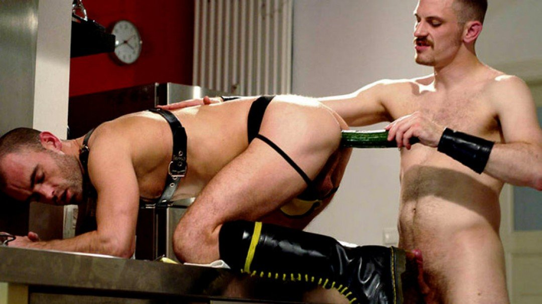 Give it to me stud!