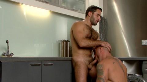 L16055 MISTERMALE gay sex porn hardcore fuck videos butch muscle studs rough xxl cocks cum hairy 012