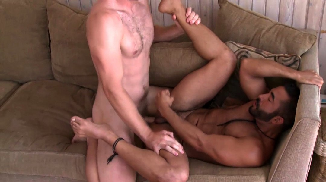 Muscled studs having gay sex everywhere
