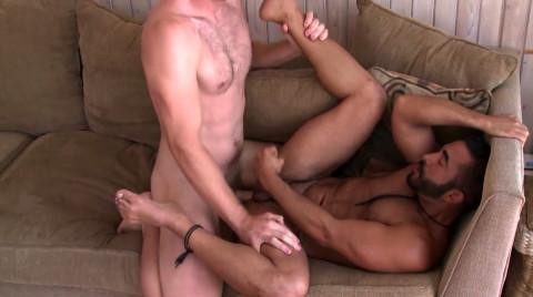 L16101 MISTERMALE gay sex porn hardcore fuck videos male butch hairy muscled studs hunks macho men xxl cocks cum 07