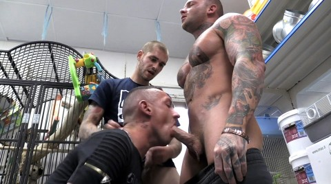 L17534 TRIGA gay sex porn hardcore fuck videos 17
